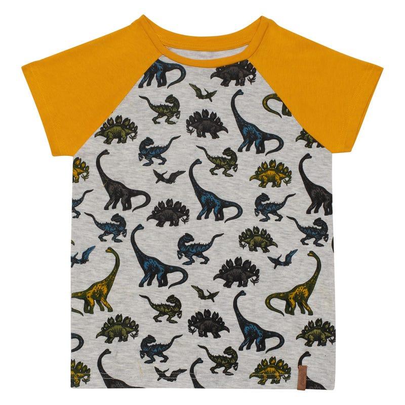 T-Shirt Raglan Dino 3-6ans