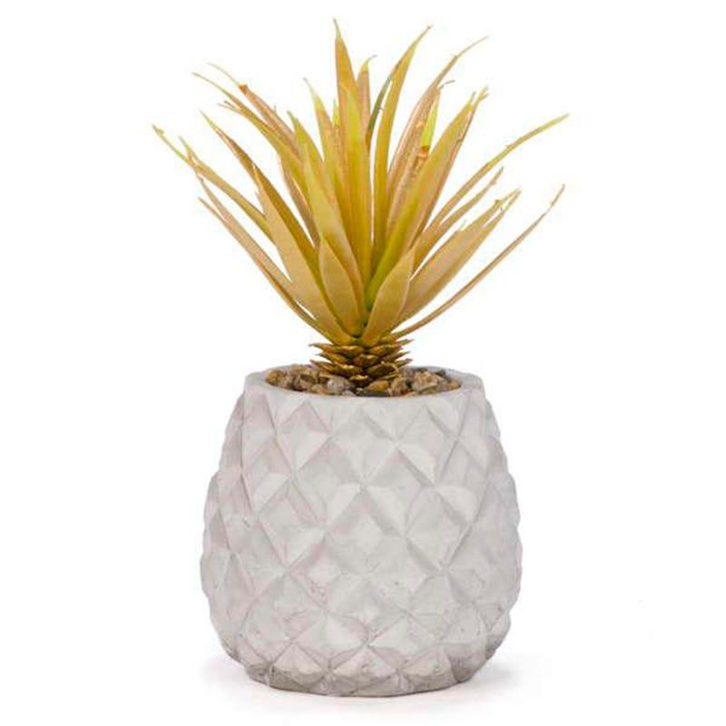 Plante Feuillage Or +Pot Gris
