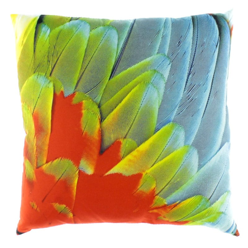 Coussin Plumes Multi * 17 X 17