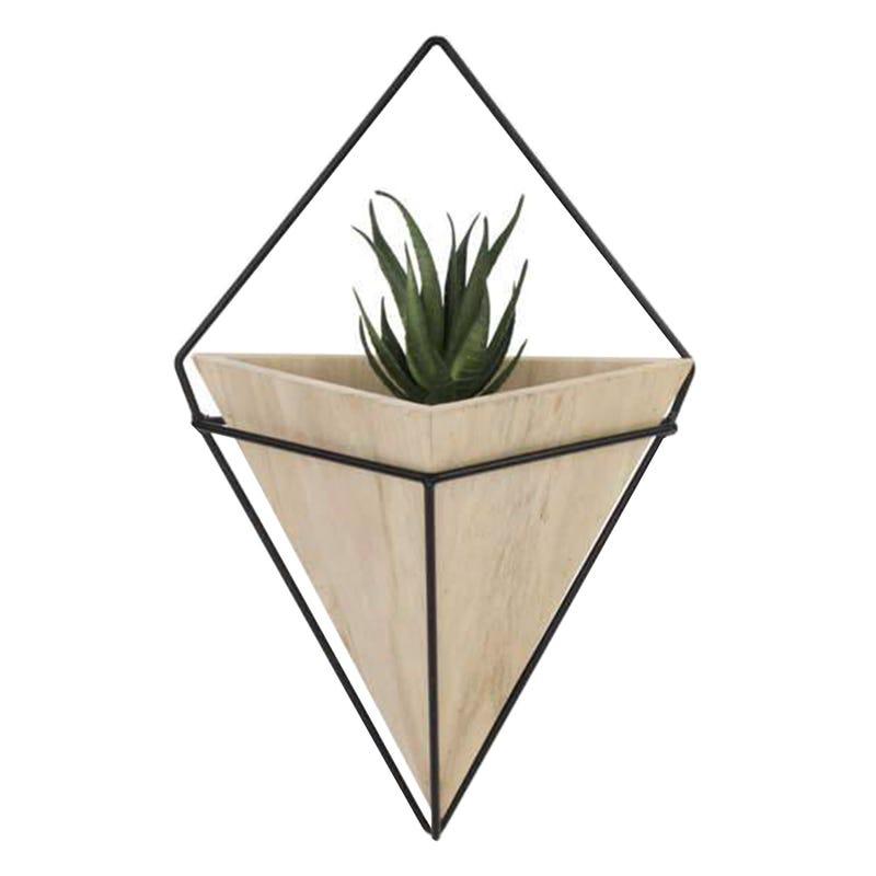 Mural Plant