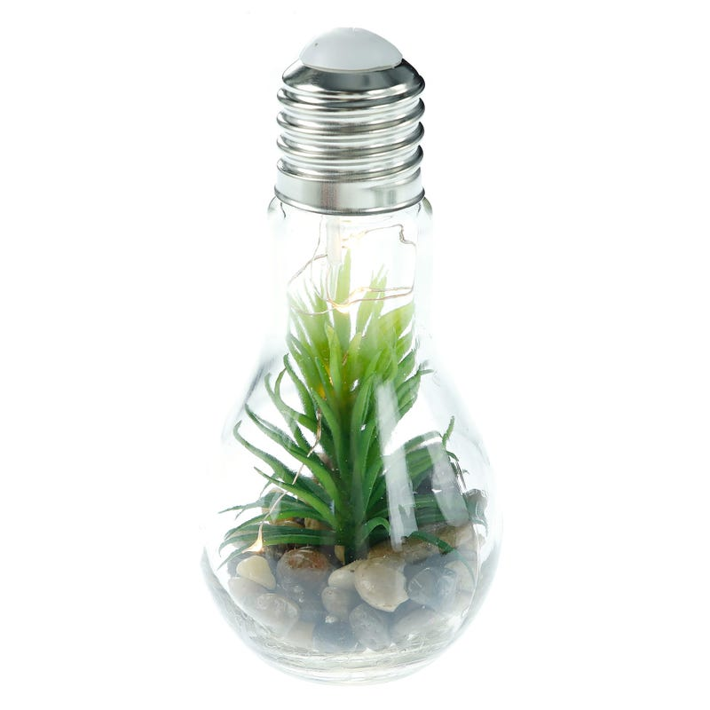 Hanging Led Glass Bulb With Plant