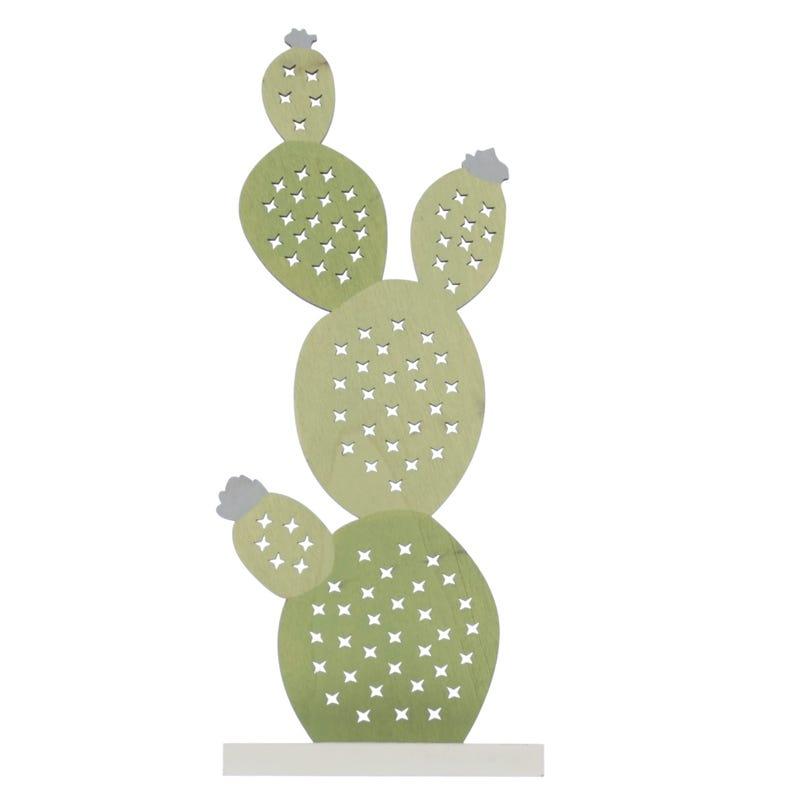 Cactus 5 X 12