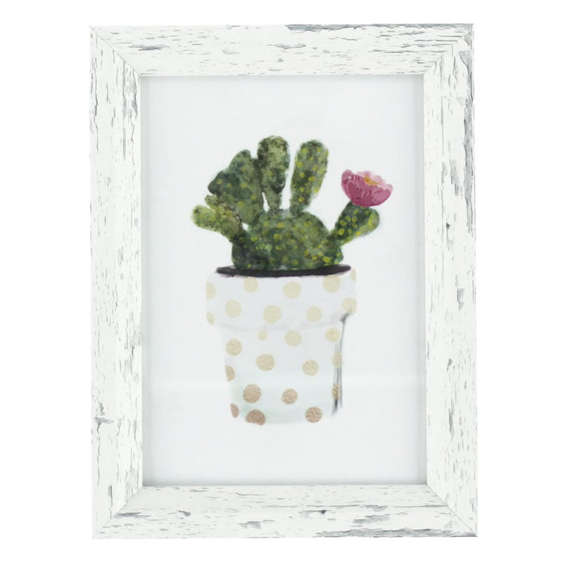 Cadre Cactus Vase Pois Asst