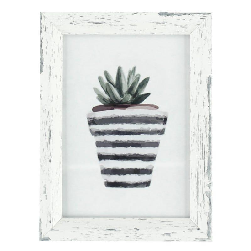 Cadre Cactus Vase Rayé Asst