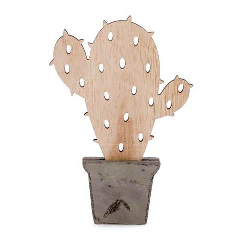 """Cactus naturel 8.5"""""""