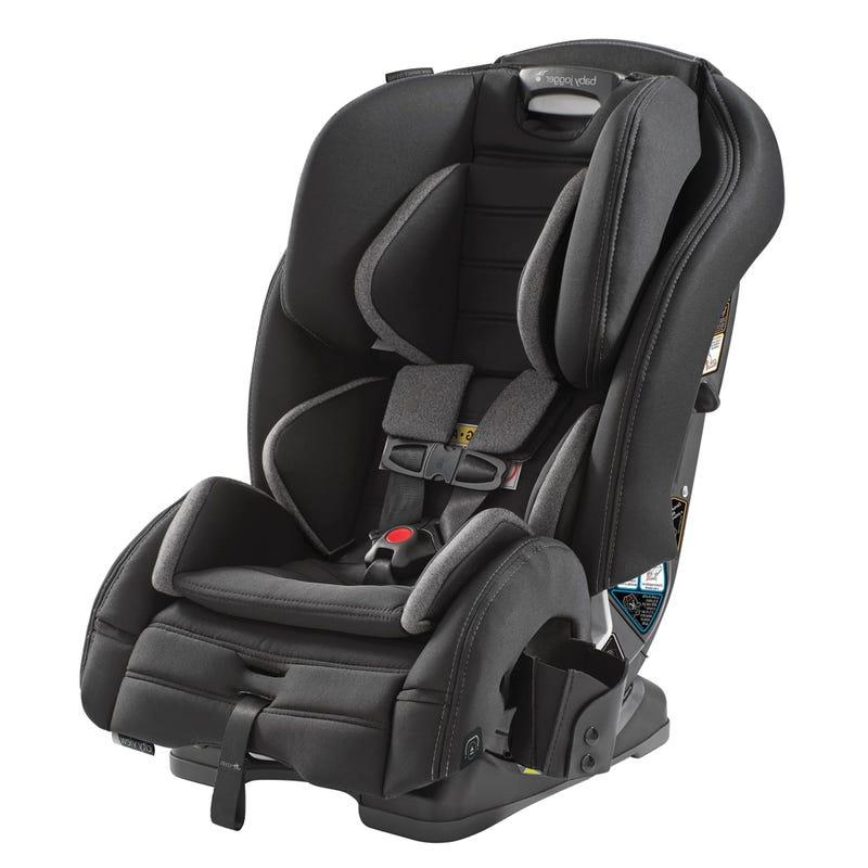 View Car Seat 5-100lb - Ash