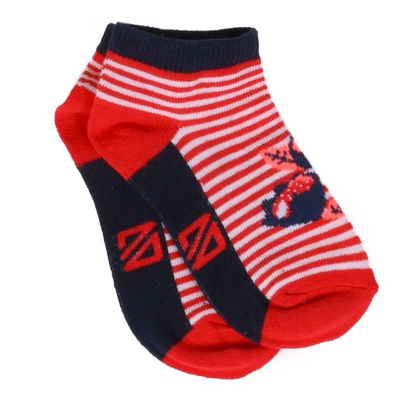 Fresh Garden Striped Socks 8-12y