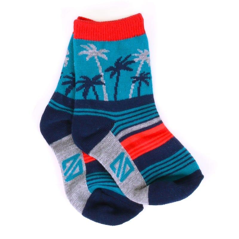 Surf Adventure Socks 3-24m