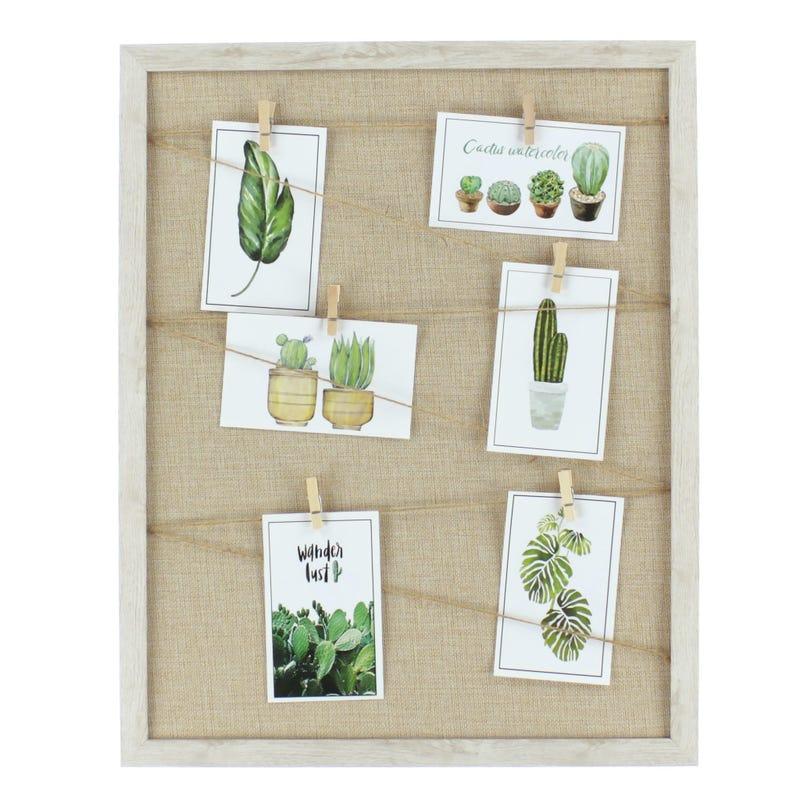 Cactus Board
