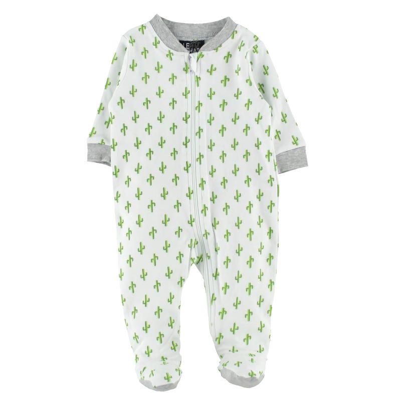 Pyjama Imp Cactus 0-30m