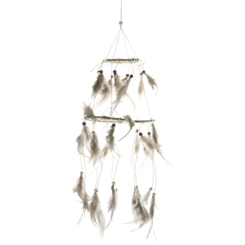 Dreamcatcher with Feather
