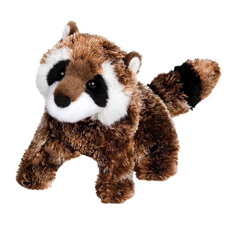 "Raccoon Patch 6"""