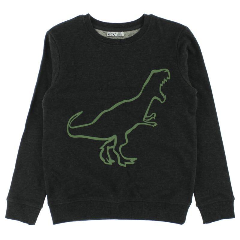 Explore Dino Sweatshirt 7-14