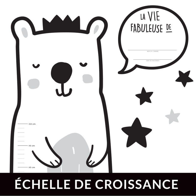 Échelle de Croissance - Ours Français