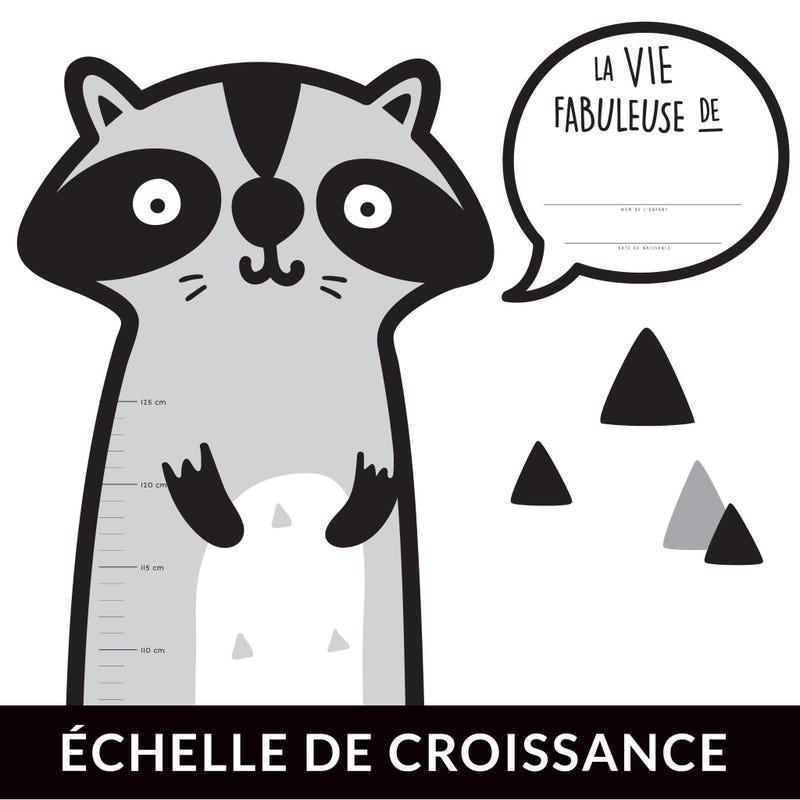 Échelle de Croissance - Raton Français