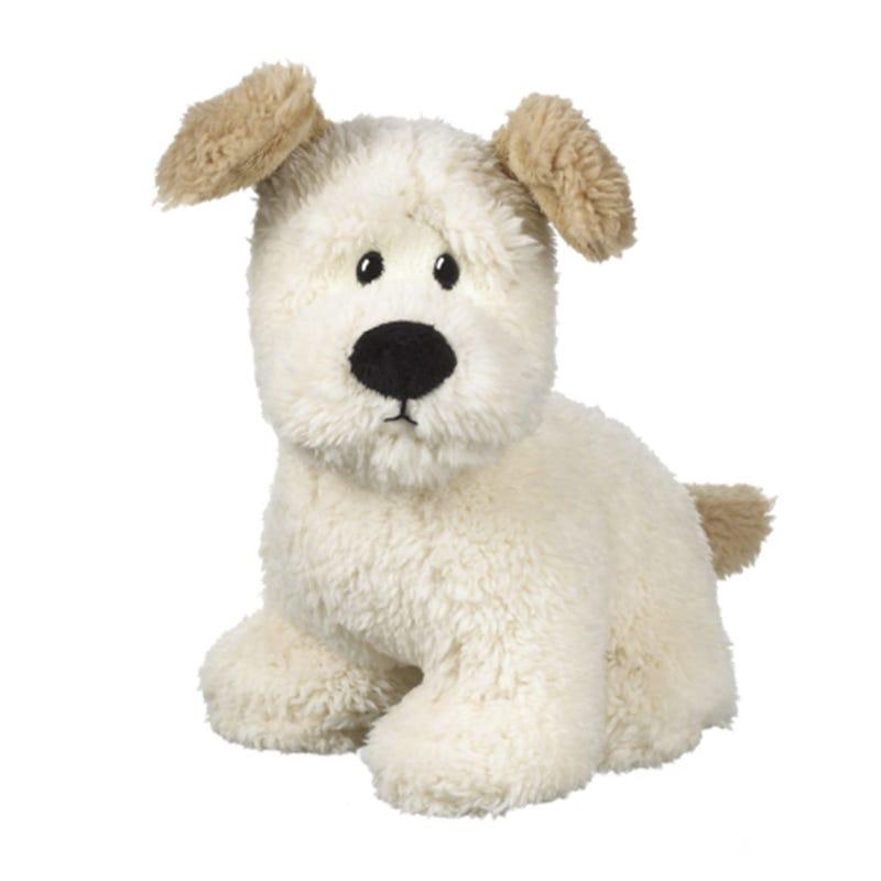 Dog Ralph