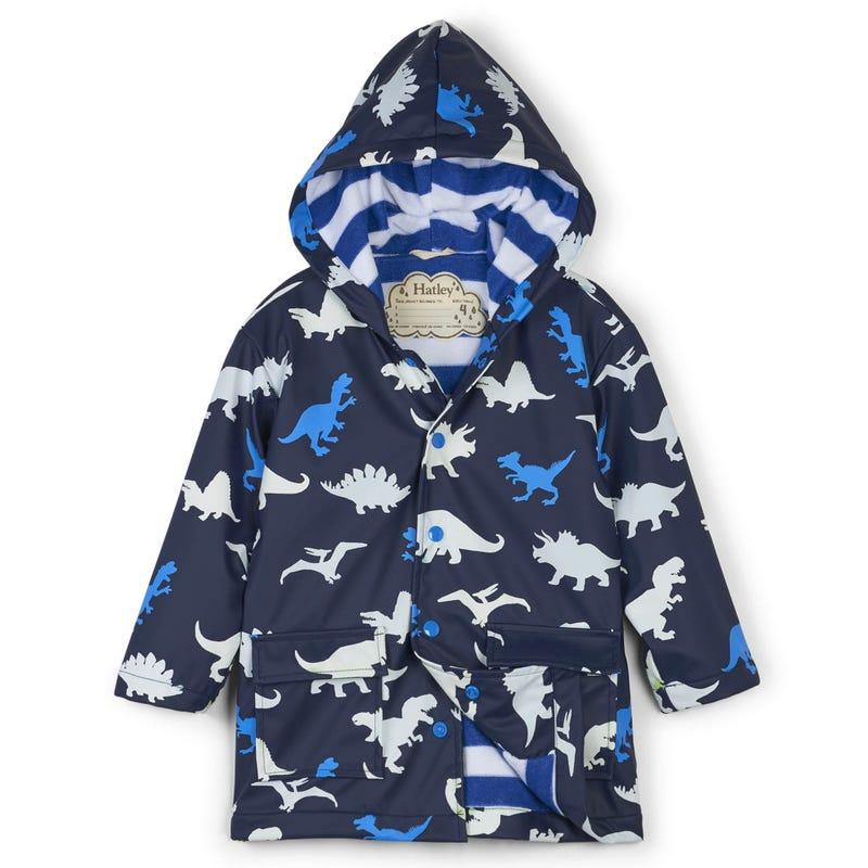 Dino Raincoat 2-10