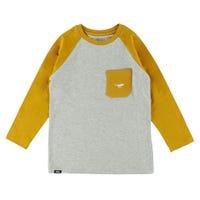 T-Shirt Raglan Hooké 2-8ans