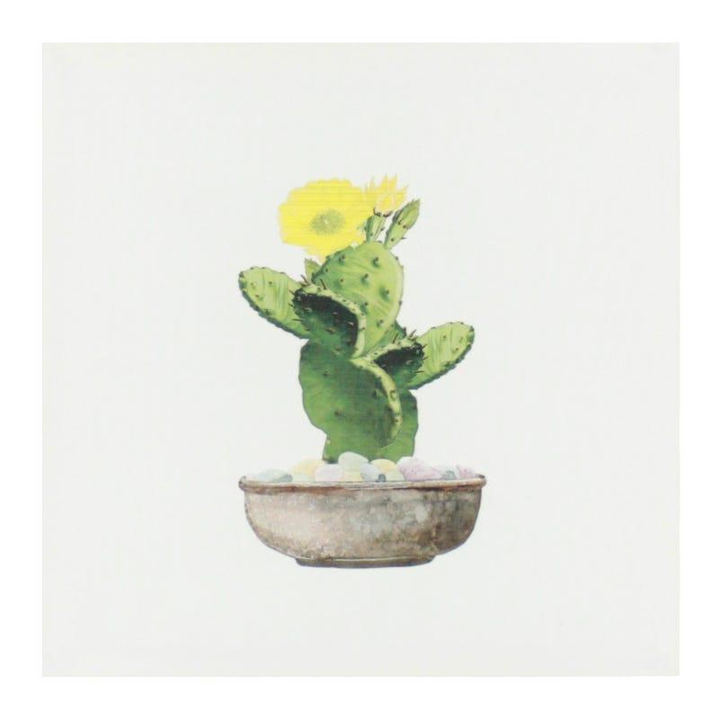 Cadre Cactus Plat Fleurs Jaunes