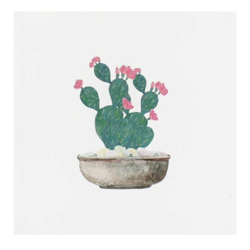 Cadre Cactus Rond Fleurs Roses