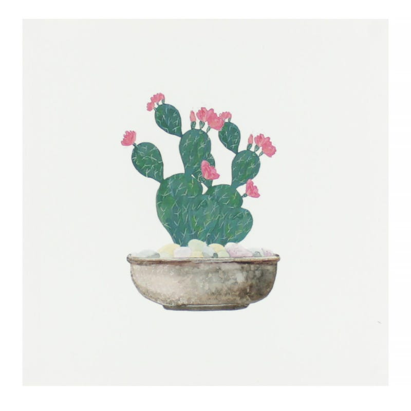 Cactus Canvas Wall Art - Pink