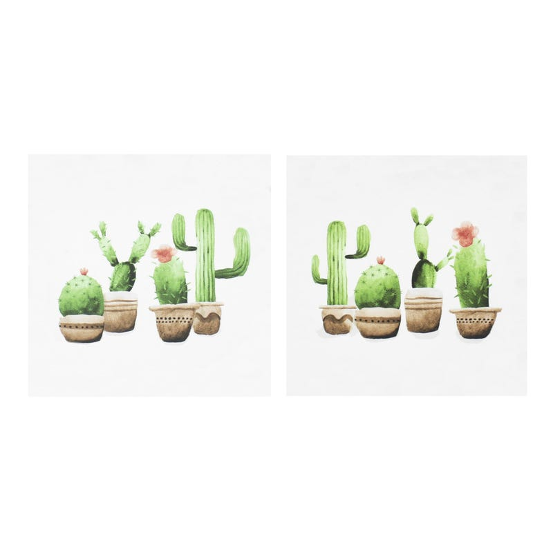Decorative Frames Set of 2 - Cactus