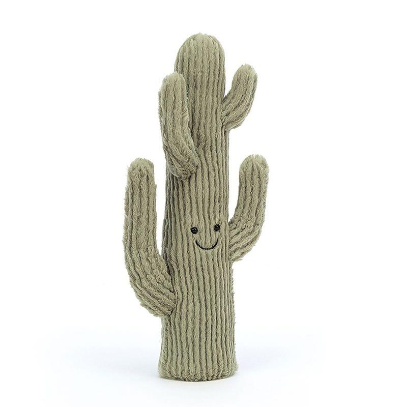"""Cactus du Désert Souriant 13"""""""
