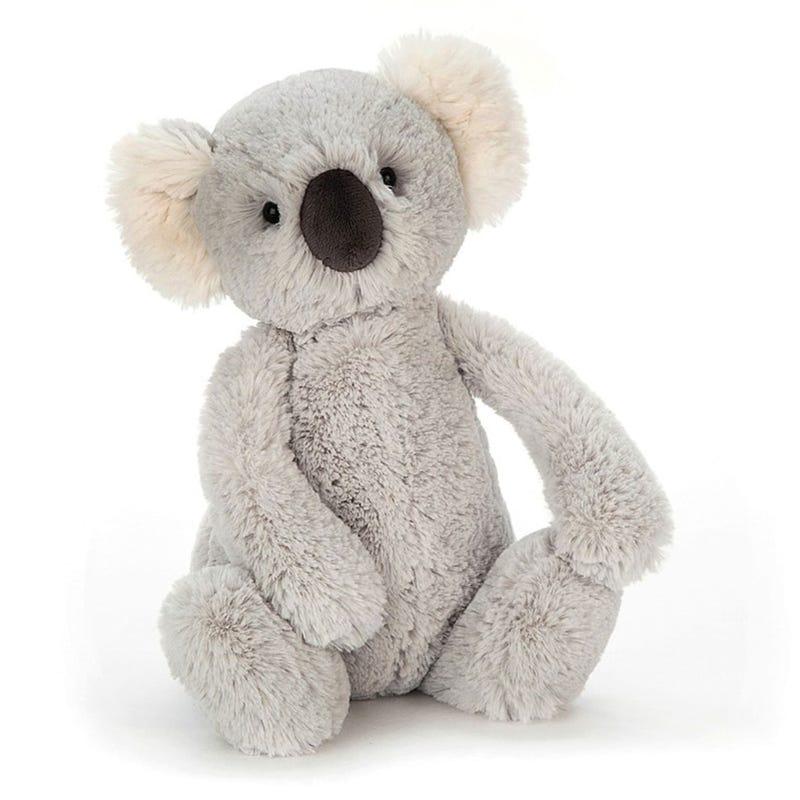 Koala Grey Bashful