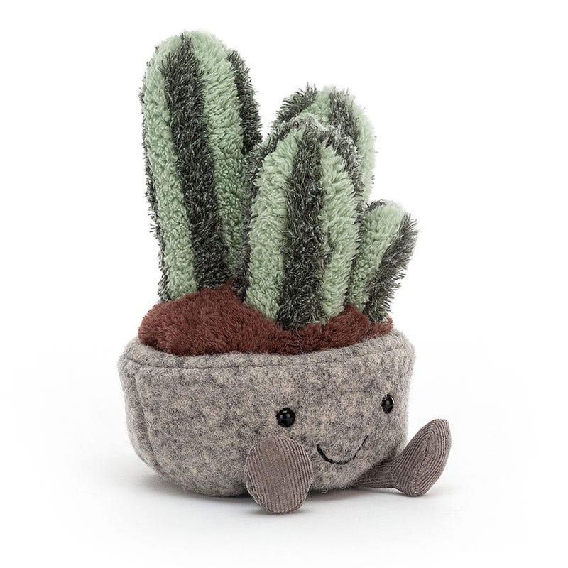 """Plante Cactus 6"""""""