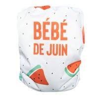 June Cloth Diaper 10-35lbs