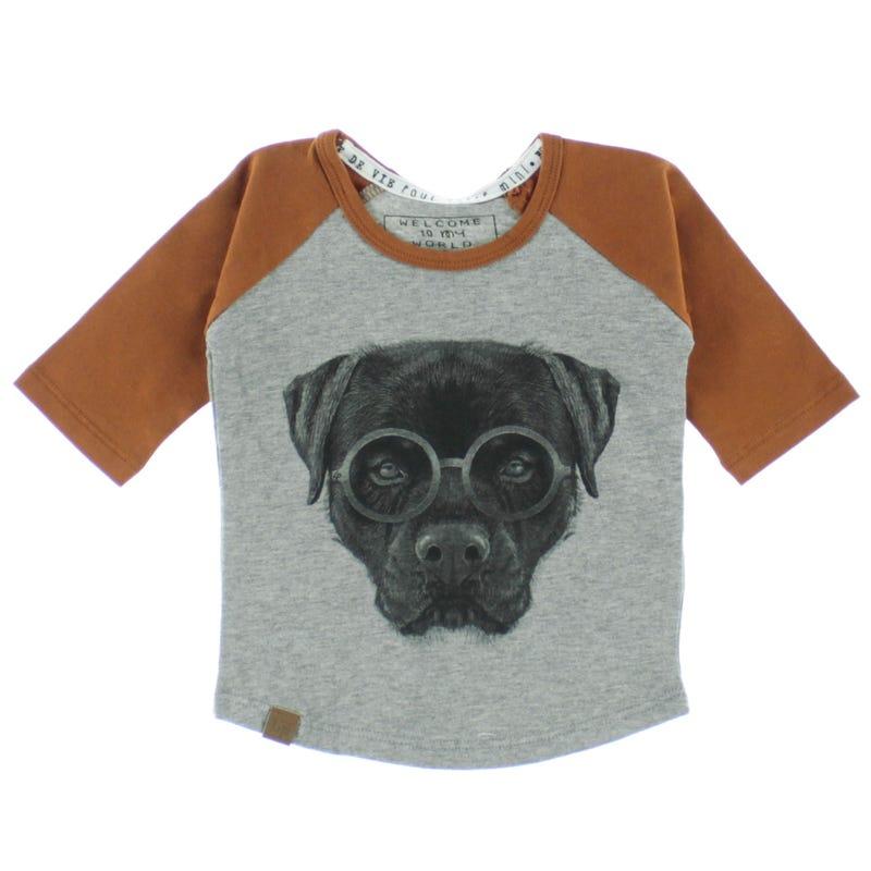 T-Shirt Raglan Rottweiler 6-24