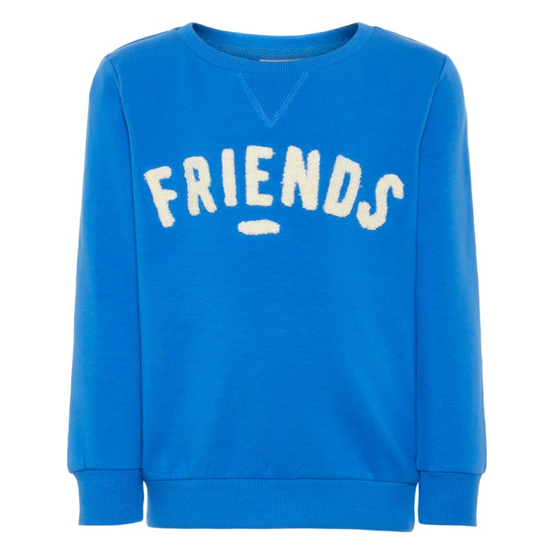 Dino Friends Sweatshirt 2-7y