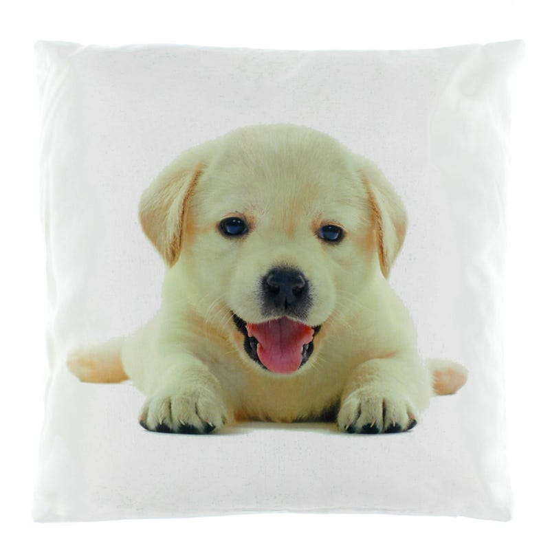 Coussin Golden R