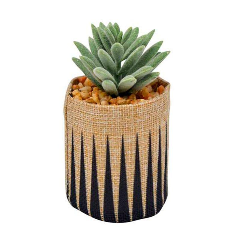 Pot Cactus En Jute