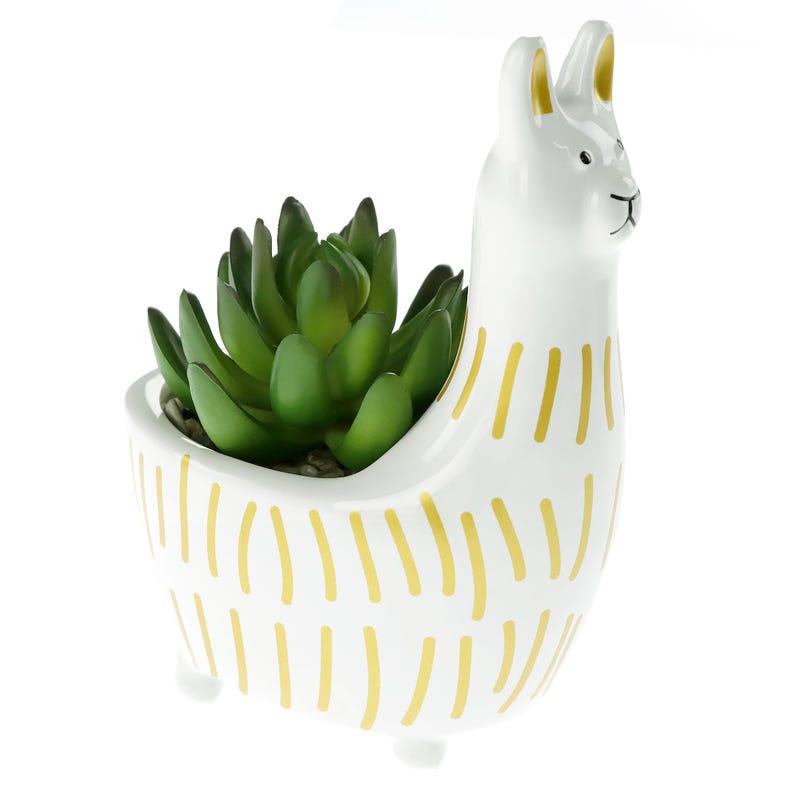 Llama Cactus Pot