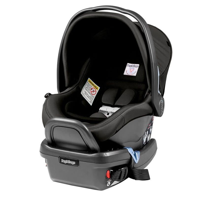 Primo Viaggio 4-35lbs Car Seat - Atmosphere