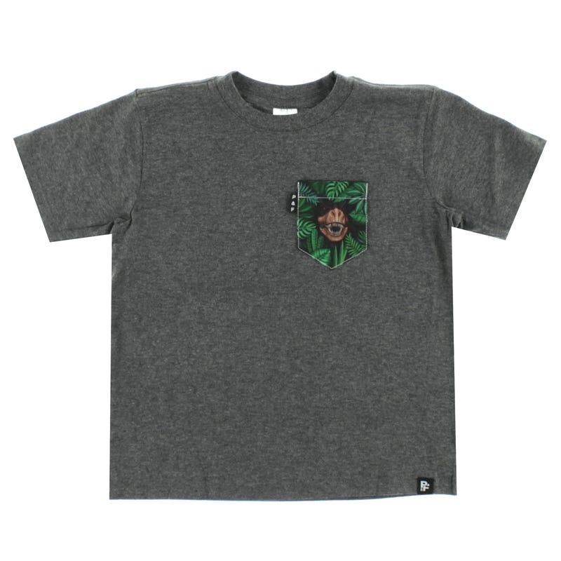 T-Shirt Dinosaure 6-12ans