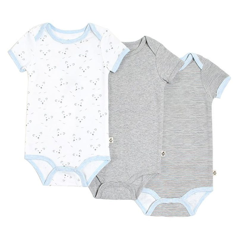 Bear Bodysuit 3-24m - Set of 3