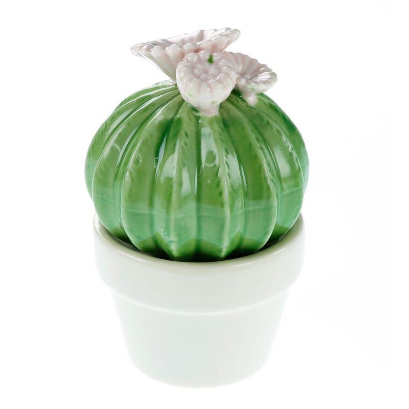 Cactus/Flowers Porcelain Pot - White