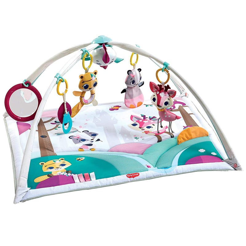 2-in-1 Playmat Gymini Deluxe - Princess
