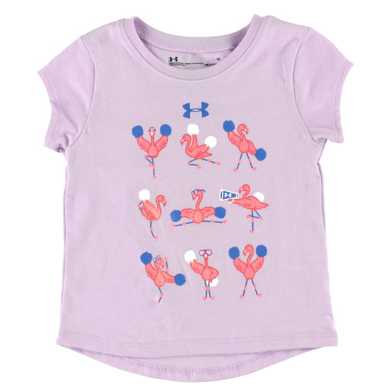 Flamingo Cheer T-Shirt 2-4y