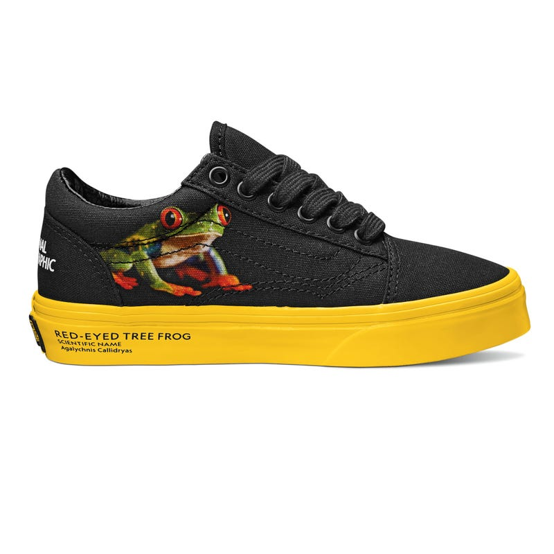Soulier Old Skool Vans x National Geographic Pointures 11-3