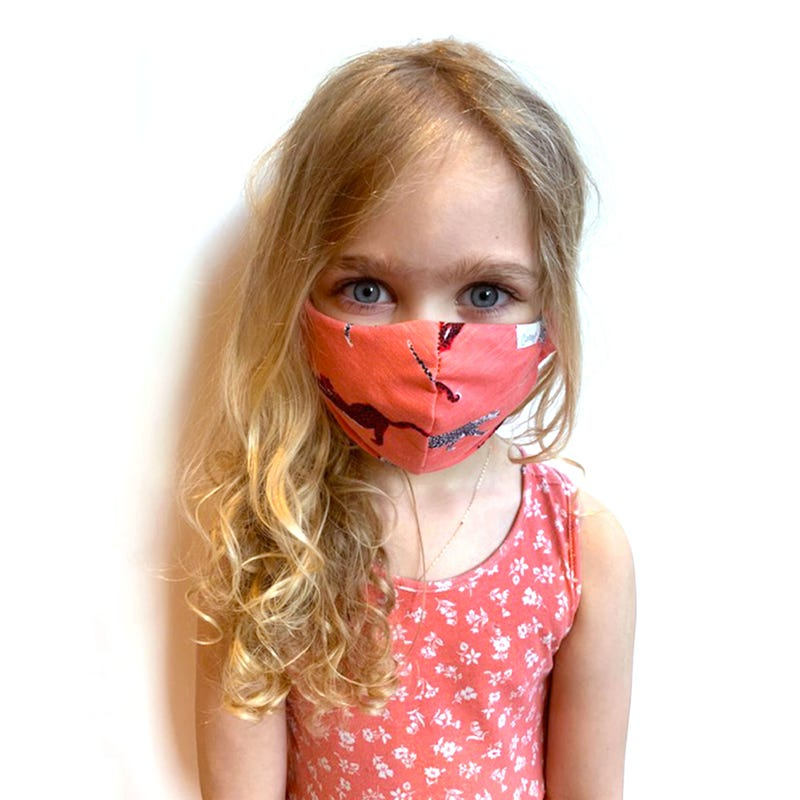 Protection Mask 2-16y - Pink Leopard
