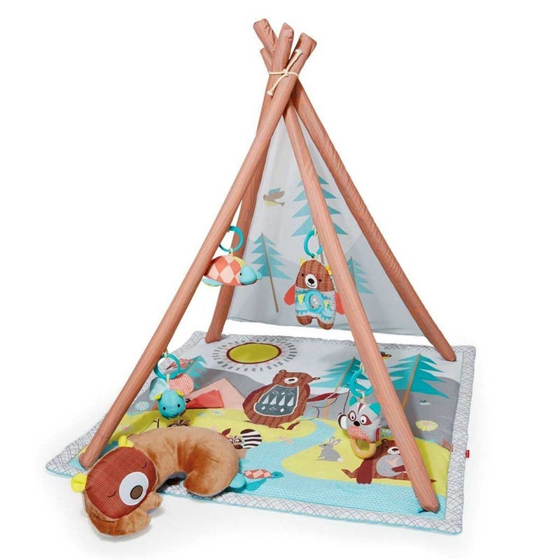 Camping Cub Activity Gym
